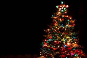 Christmas Lighting in Calgary, Alberta by Wipe Clean